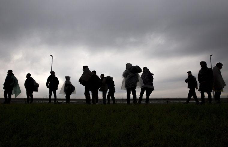 Menekültek a szerbiai Simanovci falu közelében lévő autópálya mellett menetelnek a horvát határ felé, az Európai Unióba való belépés reményében 2016-ban Fotó:EUROPRESS/Oliver Bunic/AFP #moszkvater