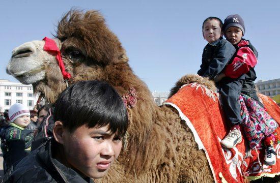 Kazak gyerekek tevegelnek a sivatag hajóján Bajkonur közelében #moszkvater