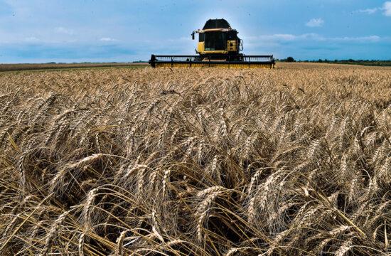 """""""Tíz év alatt Ukrajna a világ szupermarketje, és a természetes alapú élelmiszerek egyfajta elosztó központja lesz"""" #moszkvater"""