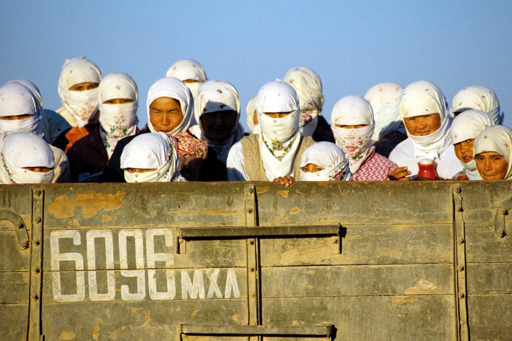 Gyapotszedő munkások egy teherautó platóján Türkmenisztánban #moszkvater