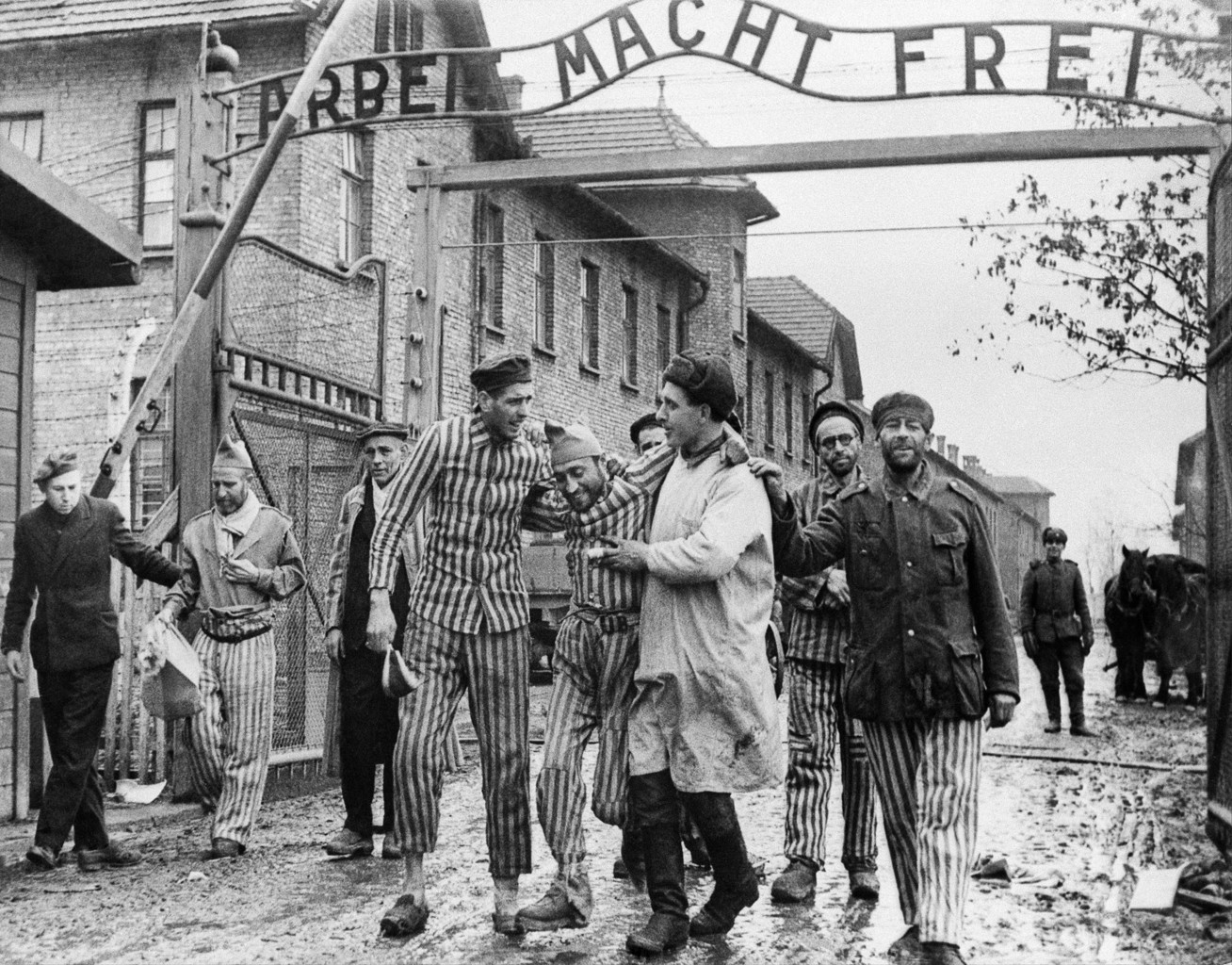 1945. január 27-én a szovjet Vörös Hadsereg felaszabadította az auschwitzi haláltábort #moszkvater