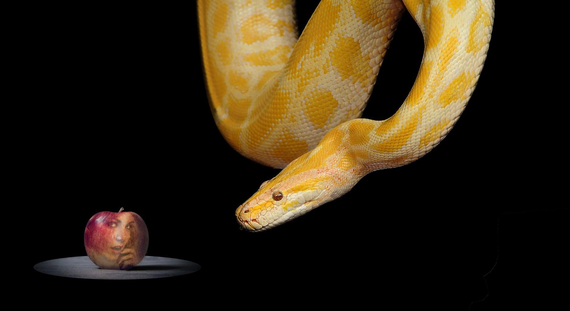 """""""Képzeljék csak el, mi történt volna az emberiséggel, ha Éva az alma helyett a provokáló kígyót eszi meg!?"""" #moszkvater"""